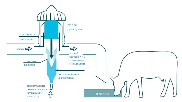 схема подключения насоса-дозатрона в систему водопоения
