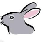 кролик, комбикорм для кроликов, комбикорм для нутрий