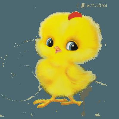 комбикорм для цыплят бройлеров