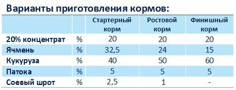bvmk-dlj-jagnjat-2